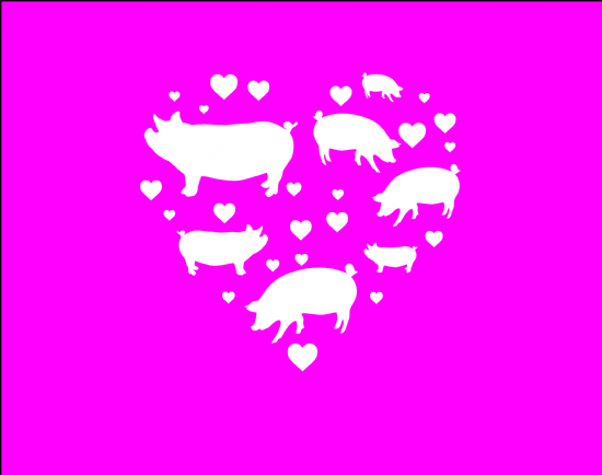 New Design - Pigs!